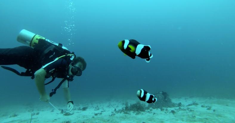 Dvě rybky a Théo - můj buddy...